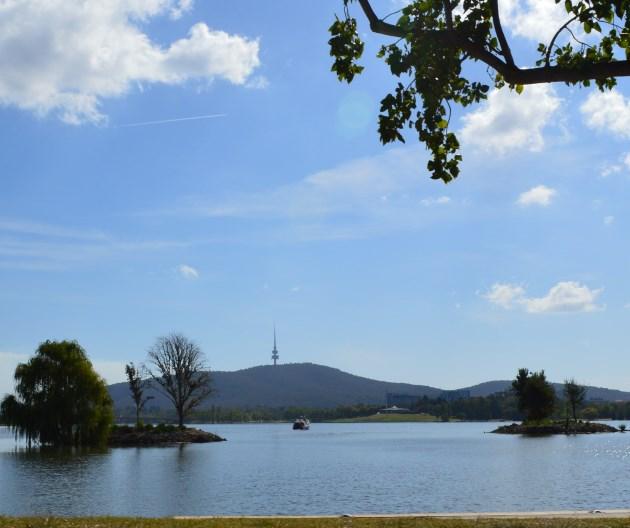 Canberra National Botanic Gardens, located on Black Mountain