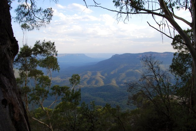 Valley View of the Blue Mountains