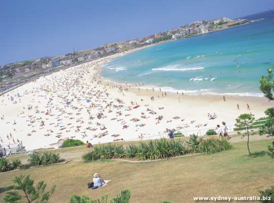 Glorious Bondi Beach on a Summer Day