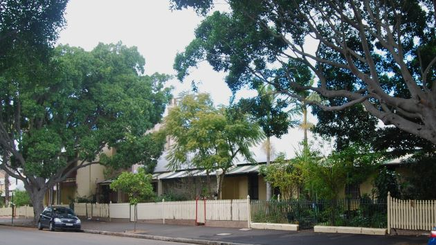 Historical workers cottages still line Glebe Point Road