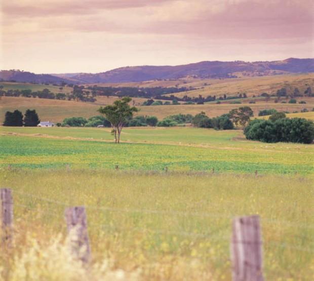 Near Bathurst, country views, NSW