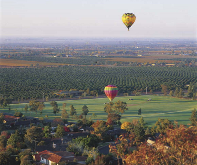 Riverina Hot Air Ballooning over vineyards, Griffith