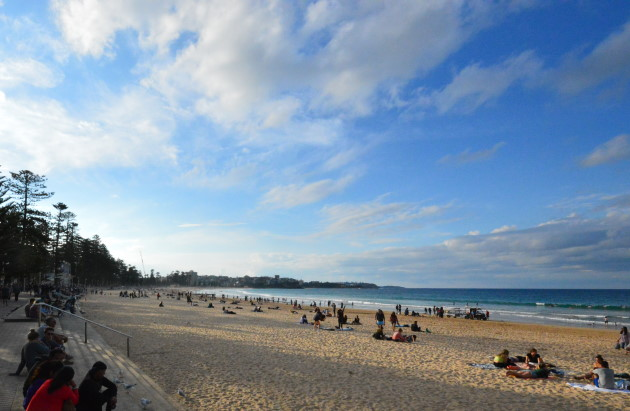 Manly Beach at dusk, with the Norfolk Pines casting a long shadow