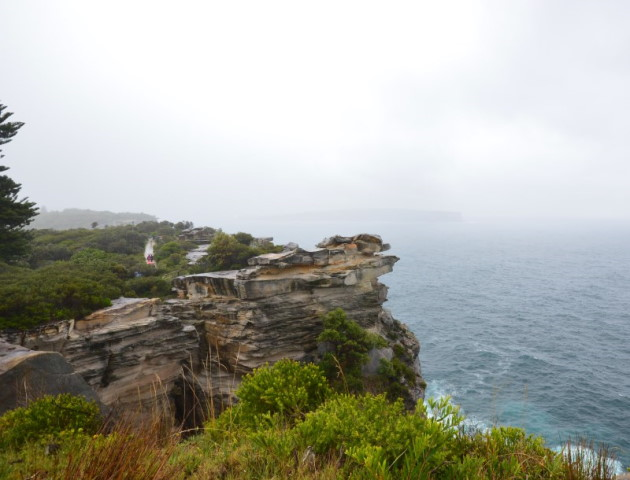 On the South Head Heritage Walk, there is dramatic scenery of both the ocean and Sydney Harbour