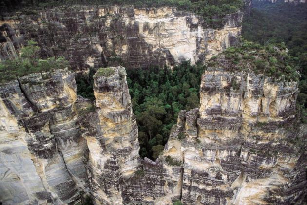 Carnarvon Gorge National Park
