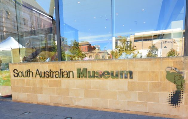 The Museum on North Terrace, Adelaide
