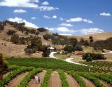 Barossa Valley