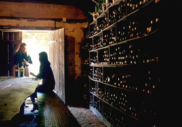 Coonawarra Wine Tasting Limestone Coast, SA