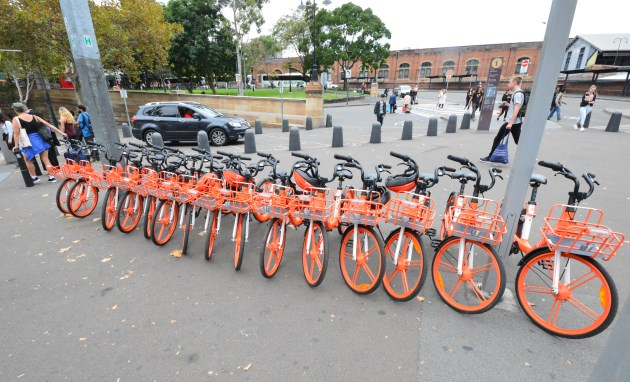 Bicycle Rentals are located in Convenient Locations