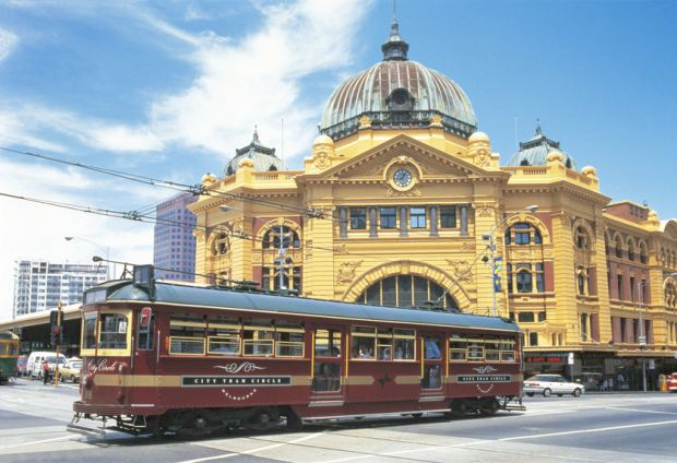 Free City Tour Trips on the Brown Coloured Trams
