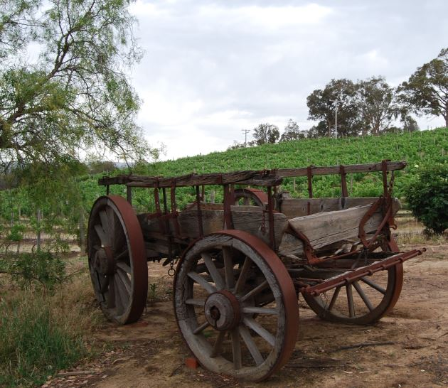 History of Australian Wines date from the Beginning of the Country